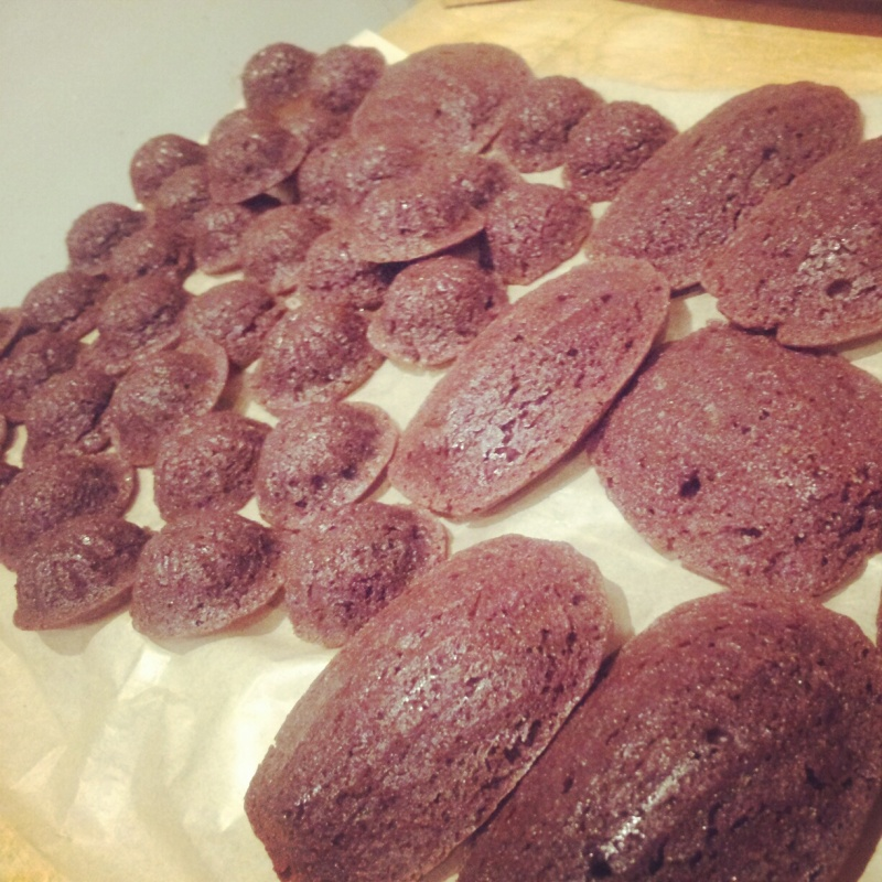 Mini Brownie Bundts and Madeleines