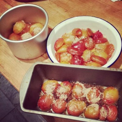 Here come the plums